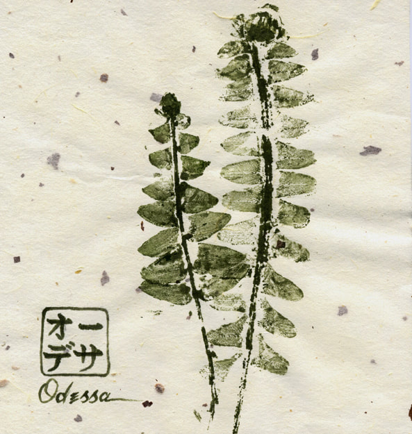 fern leaf rubbing Gyotaku on speckled mulberry paper