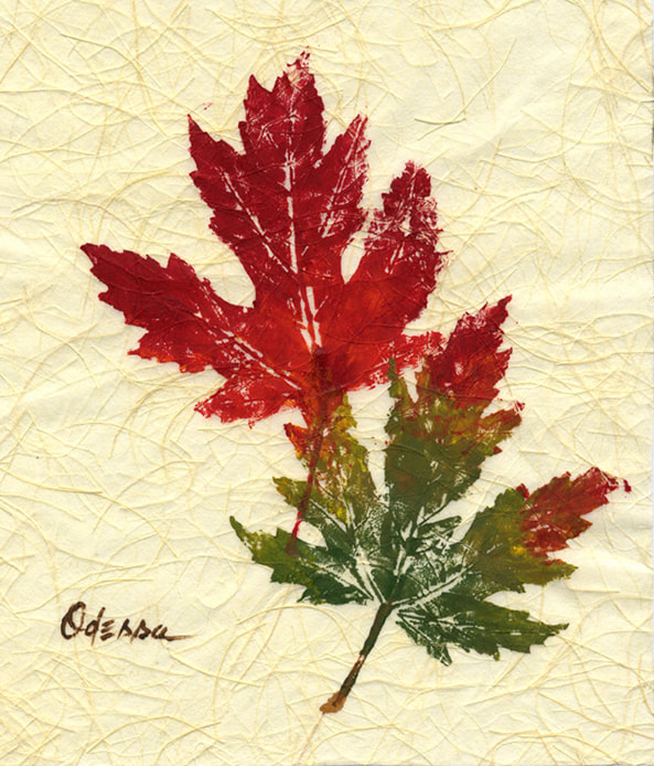 Maple leaf rubbing Gyotaku on Shoji paper