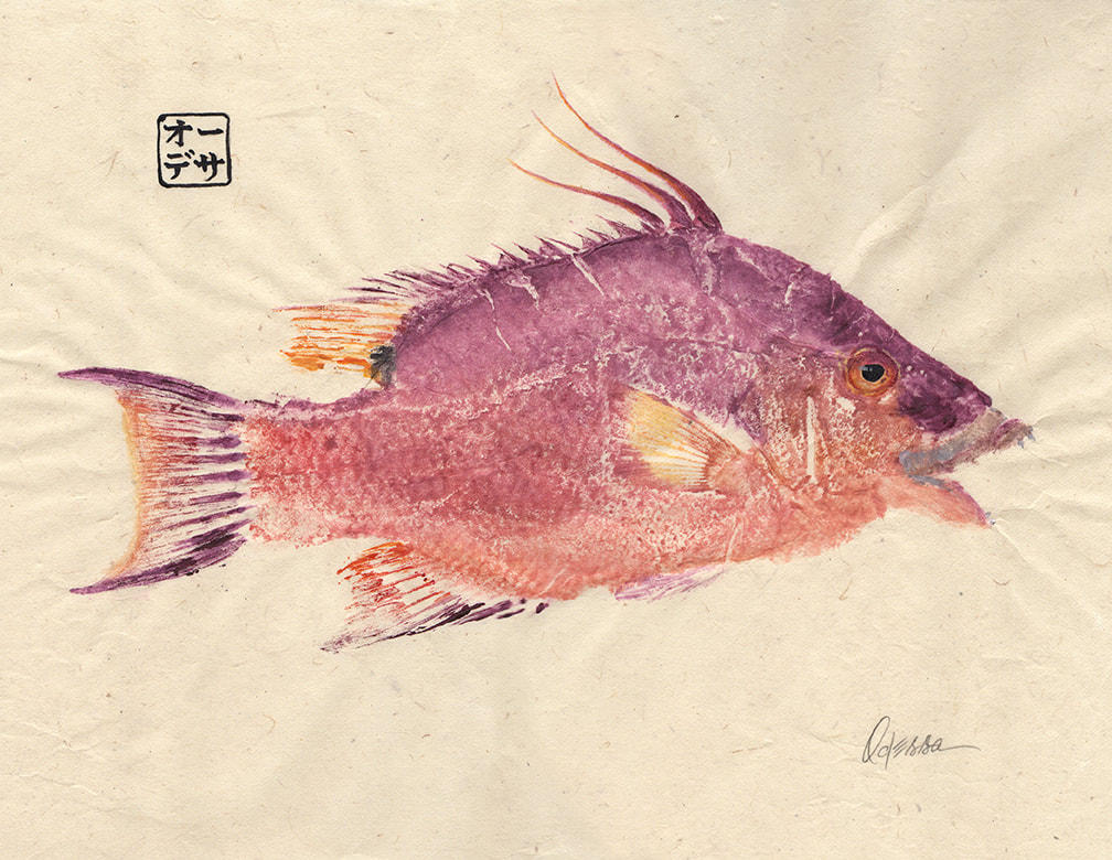 Hogfish Gyotaku on bleached mulberry paper