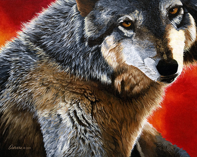Wolf with red background, acrylic on canvas