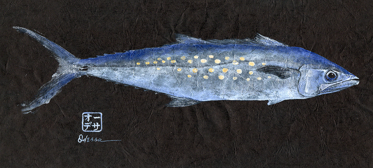 silver, gold and blue Spanish mackerel Gyotaku on black mulberry paper
